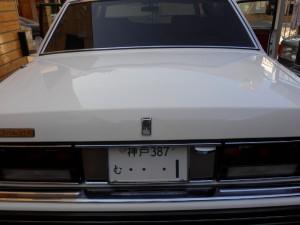 DSCN1280 (800x600)