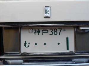 DSCN1282 (800x600)