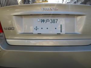 DSCN1283 (800x600)